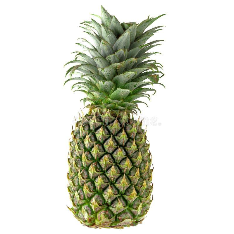Pojedyncza cała ananasa wyizolowana na białym tle fotografia stock