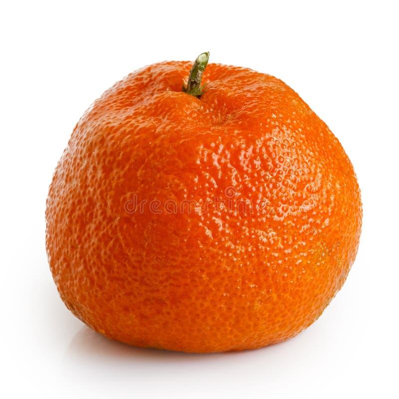 Pojedyncza cała mandarynka z trzonem zdjęcia royalty free