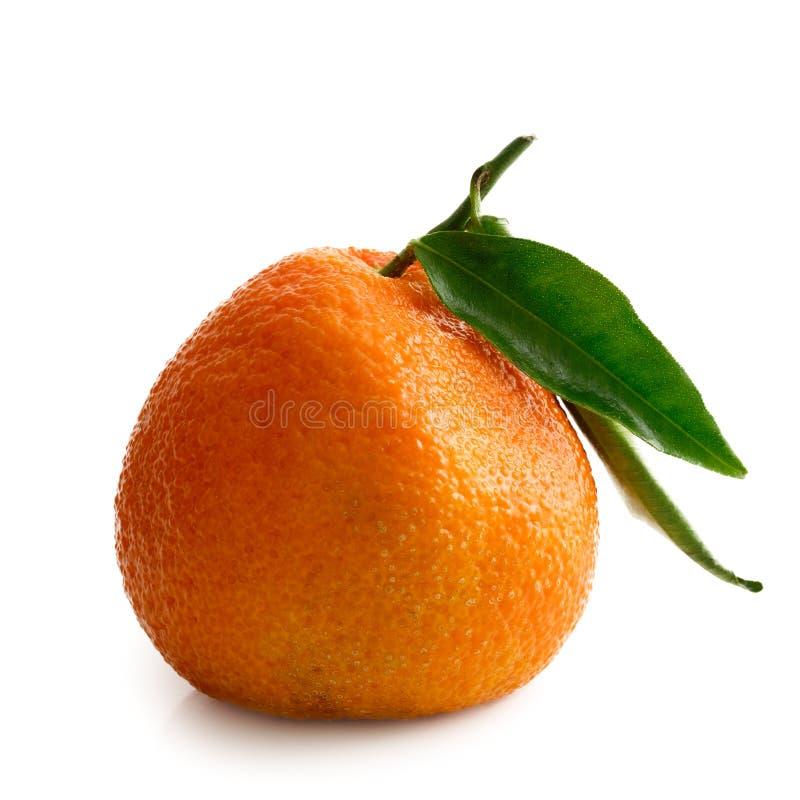 Pojedyncza cała mandarynka z trzonem i liśćmi odizolowywającymi na bielu zdjęcia stock
