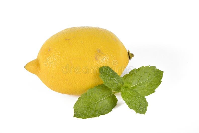 Pojedyncza cytryny owoc z kawałkiem mennica zdjęcie stock