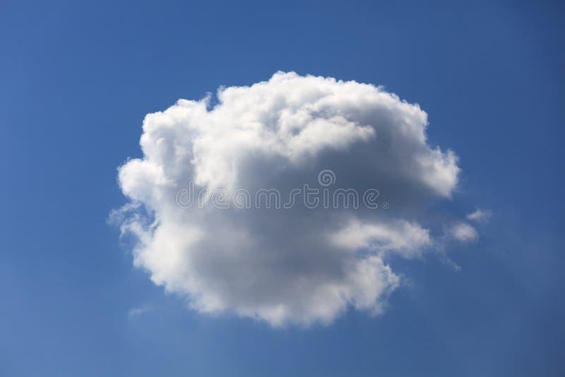 Pojedyncza puszysta chmura. zdjęcie royalty free