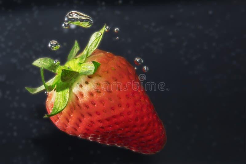 Pojedyncza truskawka w wodzie z b?blami Makro- zdjęcie royalty free