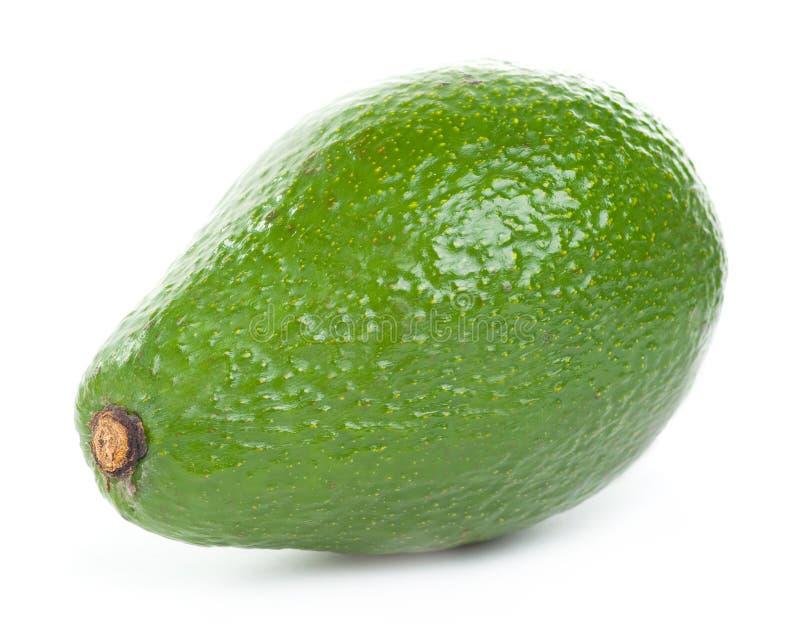 Pojedynczy avocado obrazy stock
