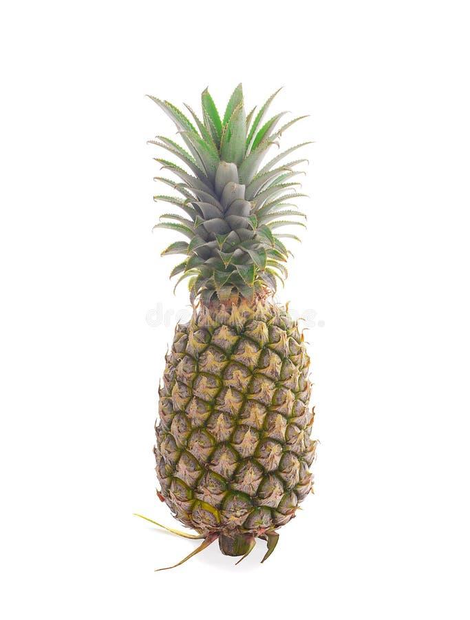 Pojedynczy ca?y ananas odizolowywaj?cy na bia?ym tle zdjęcia stock