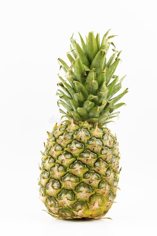 Pojedynczy ca?y ananas odizolowywaj?cy na bia?ym tle obraz royalty free
