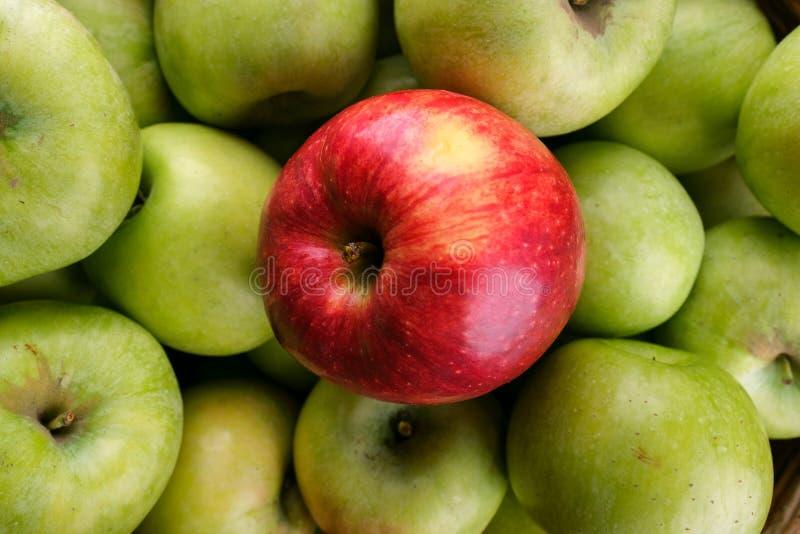 Pojedynczy czerwony jabłko na zielonej jabłko teksturze obrazy stock