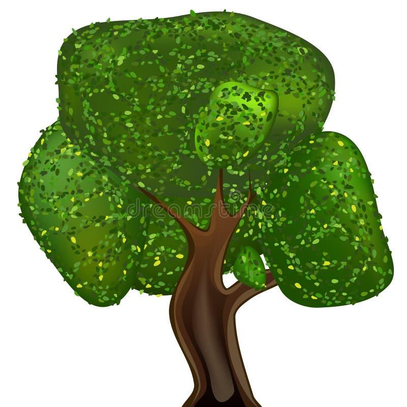 Pojedynczy deciduous drzewo Odizolowywająca wektorowa ilustracja ilustracja wektor