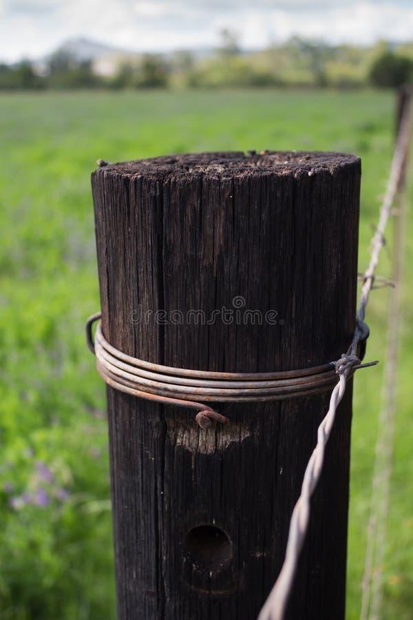 Pojedynczy drewniany płotowy poczta zakończenie up w wiejskim położeniu fotografia royalty free