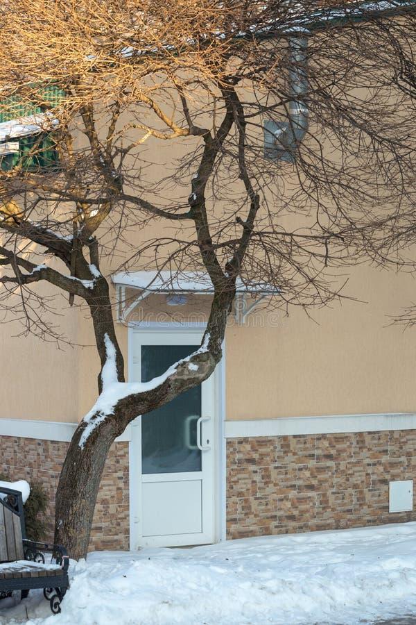 Pojedynczy drzwi pod drzewem zakrywającym z śniegiem zdjęcia royalty free