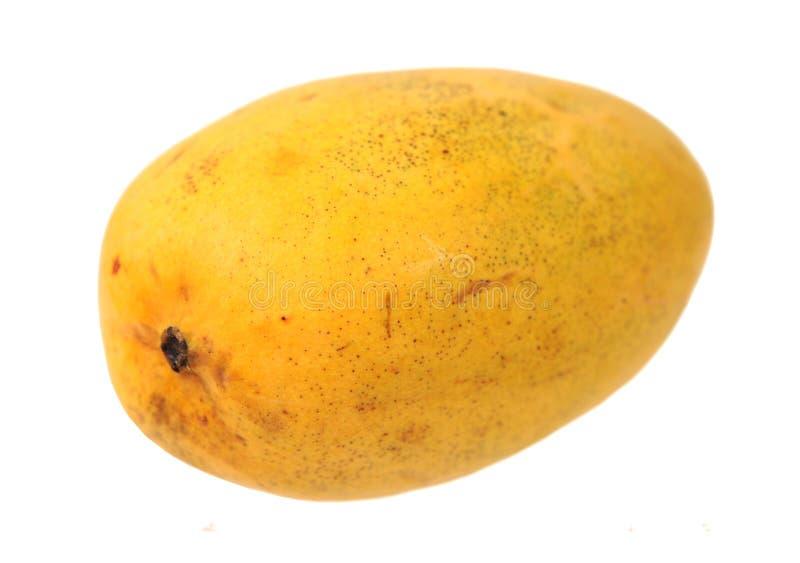 Pojedynczy mango fotografia royalty free