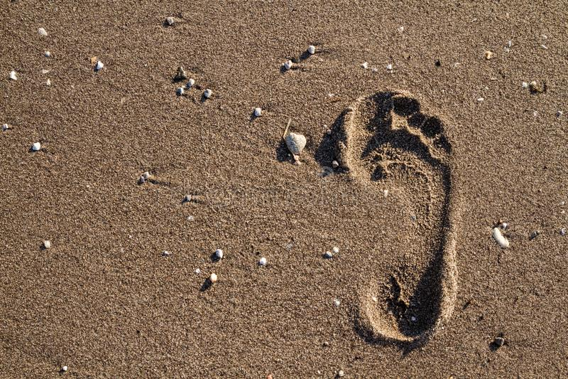 Pojedynczy Nożny druk na Mokrym piasku plaża obrazy stock
