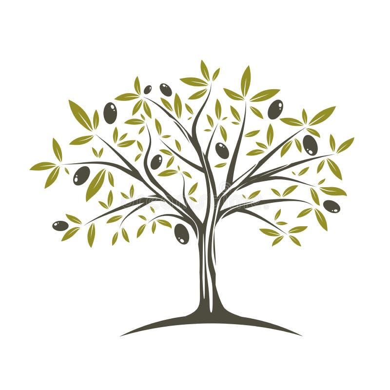 pojedynczy oliwki drzewo royalty ilustracja