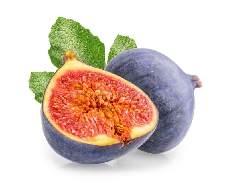 pojedynczy owoc figi tło białe obraz royalty free