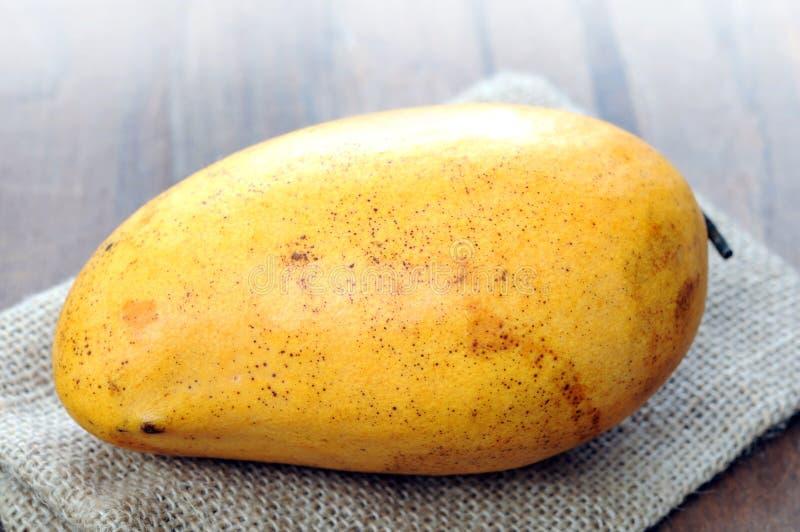 Pojedynczy słodki dojrzały mango fotografia stock