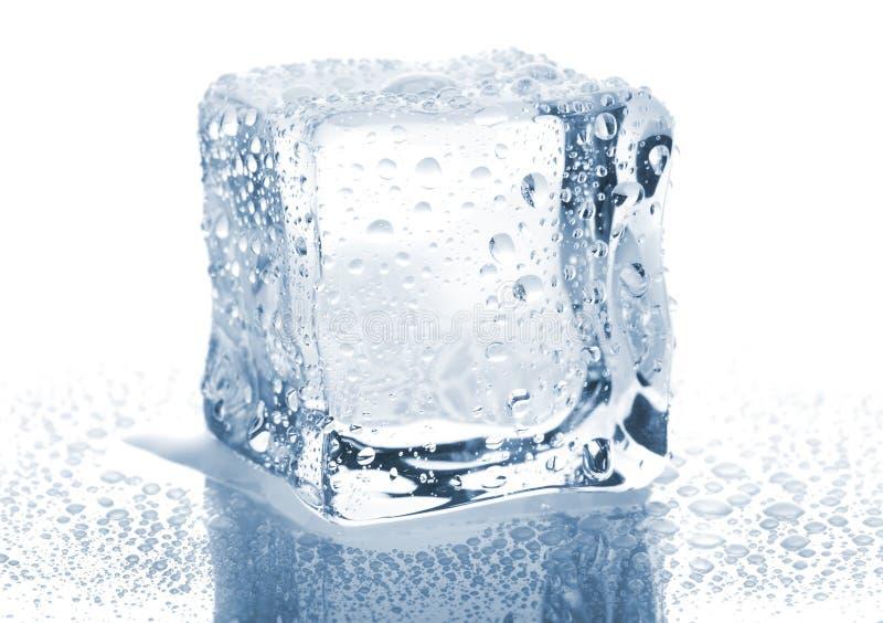 pojedynczy sześcianu lód zdjęcie stock