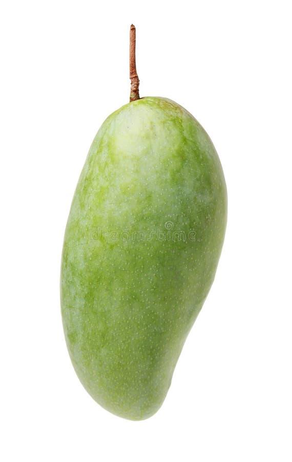 pojedynczy zielony mango zdjęcie royalty free