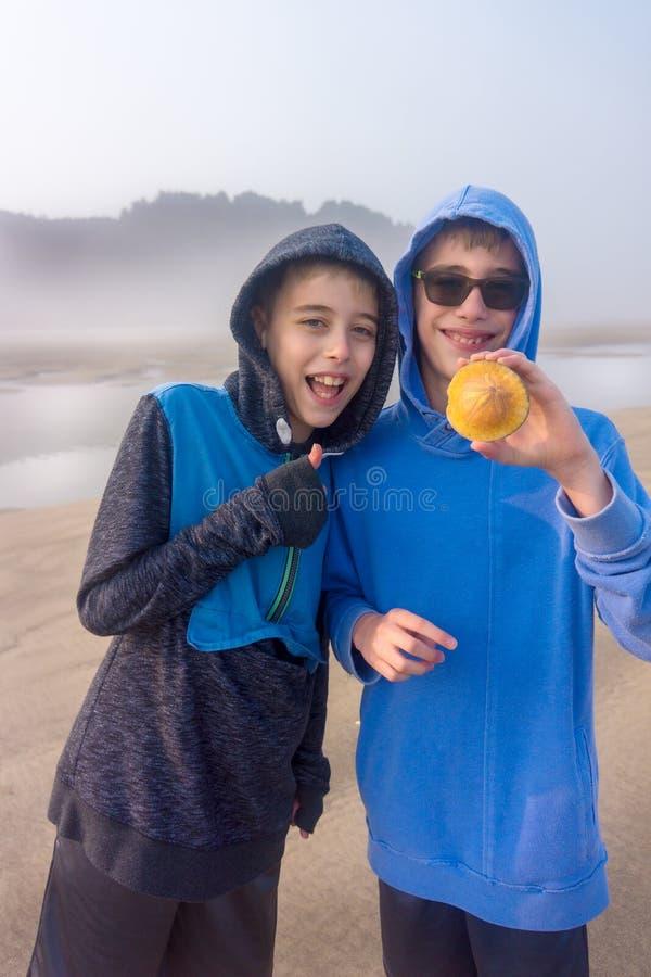 Pojkar finner snäckskalsanddollaren på stranden arkivfoton