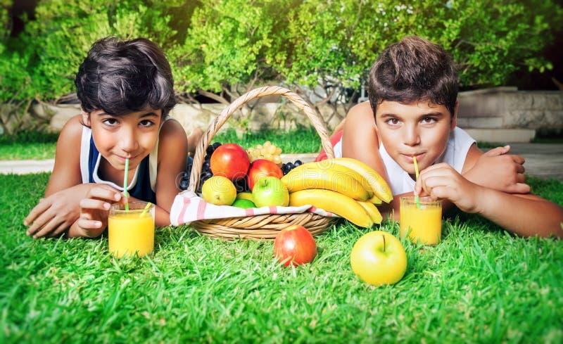 Pojkar som dricker fruktsaft royaltyfria foton