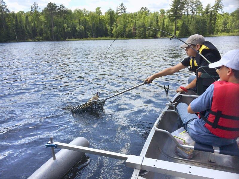 Pojkar som fiskar i en kanot, fångar en walleye arkivfoton