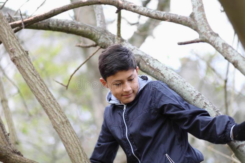 Pojke bland träden arkivbilder