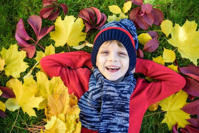 Pojke för liten unge som ligger i höstsidor i röd sweater Det lyckliga barnet som har gyckel i höst, parkerar på varm dag Gulligt arkivbilder