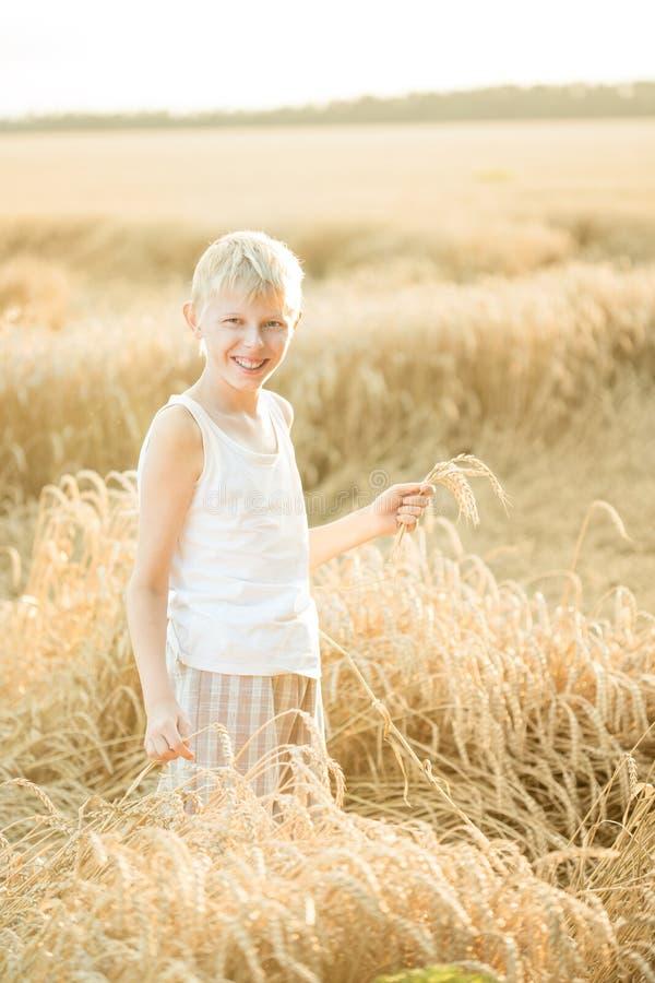 Pojke i ett vetefält arkivbilder