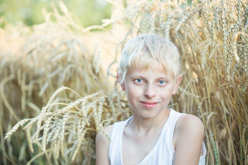 Pojke i ett vetefält royaltyfri bild