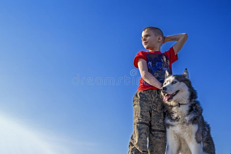 Pojke med den Siberian skrovliga hunden på bakgrund för blå himmel Gå med den skrovliga hunden arkivbilder