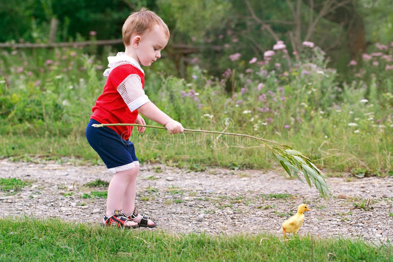 Pojke och ankunge på byvägen royaltyfri foto