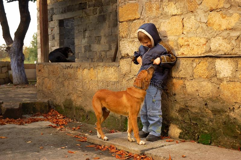 Pojke- och hemlöshund arkivbild