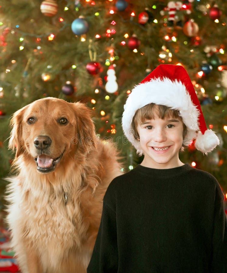 Pojke och hund på jul royaltyfri foto