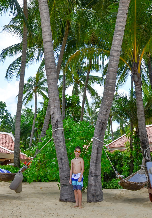 Pojke, palmträd och hammocs på den härliga tropiska stranden arkivbilder
