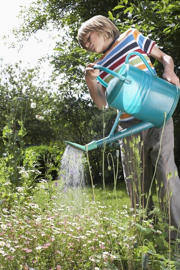 Pojke som bevattnar blommor i trädgård royaltyfri foto