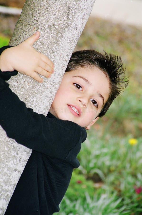 pojke som klättrar den gulliga små treen arkivbild