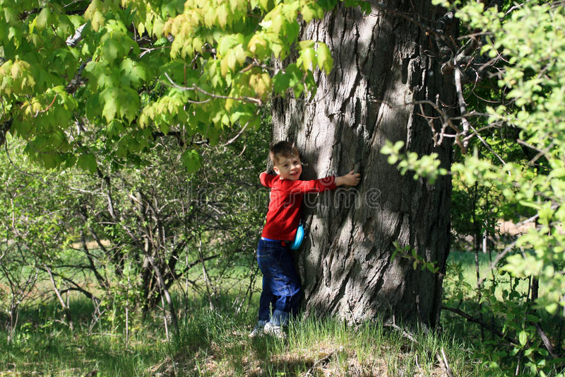pojke som kramar treebarn arkivbilder