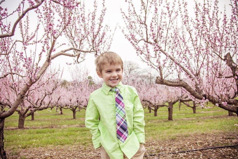 Pojke som ler att stå i blomningträd arkivfoto