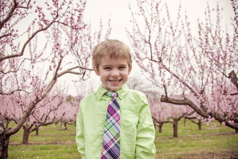 Pojke som ler att stå i blomningträd royaltyfri fotografi