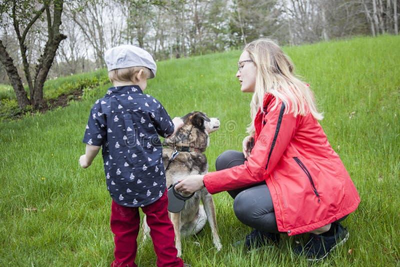 Pojke som möter en ny hund arkivbild