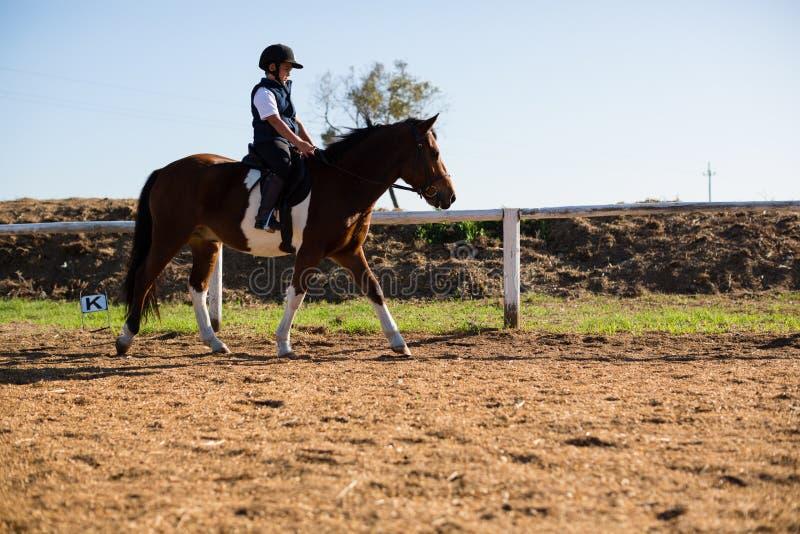 Pojke som rider en häst i ranchen arkivbild