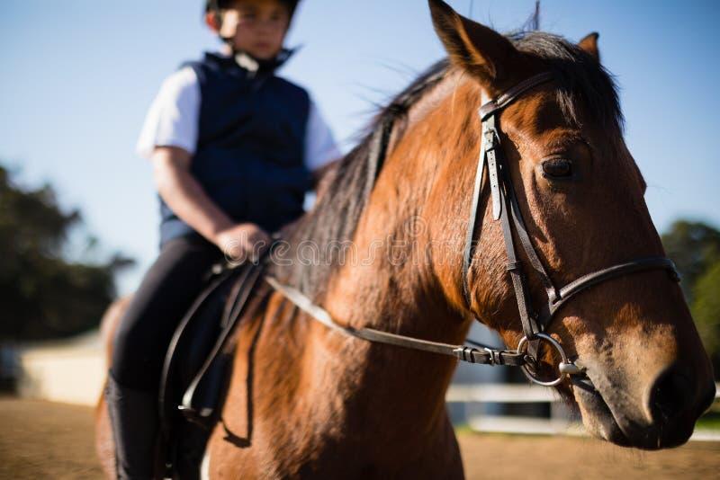 Pojke som rider en häst i ranchen royaltyfri bild