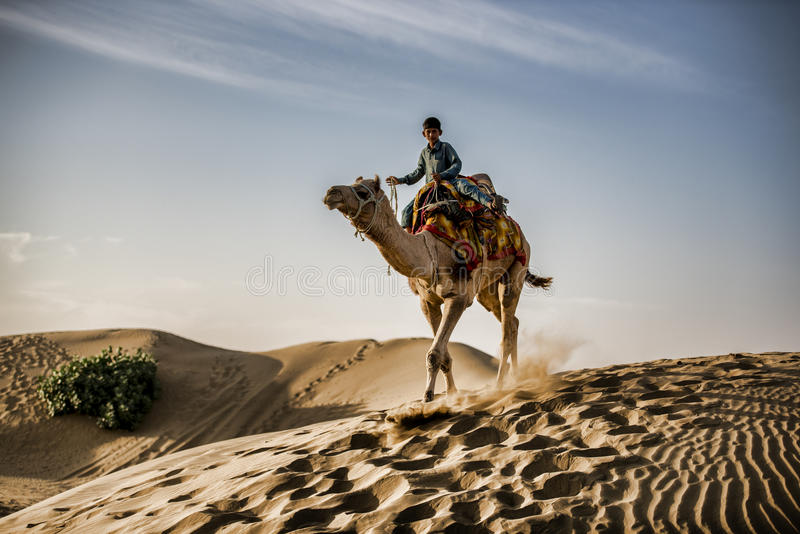 Pojke som rider en kamel i öknen royaltyfri fotografi