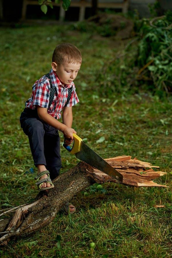 Pojke som sågar det stupade trädet i trädgård royaltyfri foto