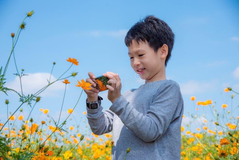 Pojke som tar fotoet av blomman vid den smarta telefonen arkivbilder