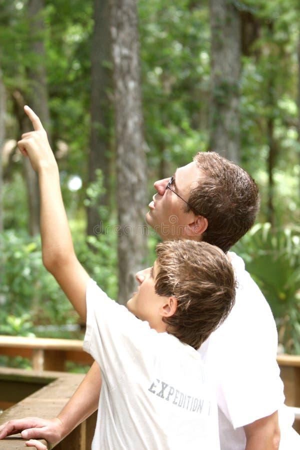 pojkefader som fotvandrar hans parksommartonåring arkivbild