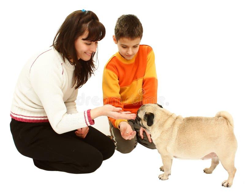 pojkehundkvinna royaltyfri bild