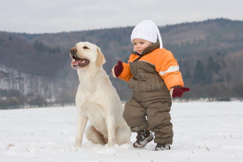 pojkehundstående royaltyfri foto