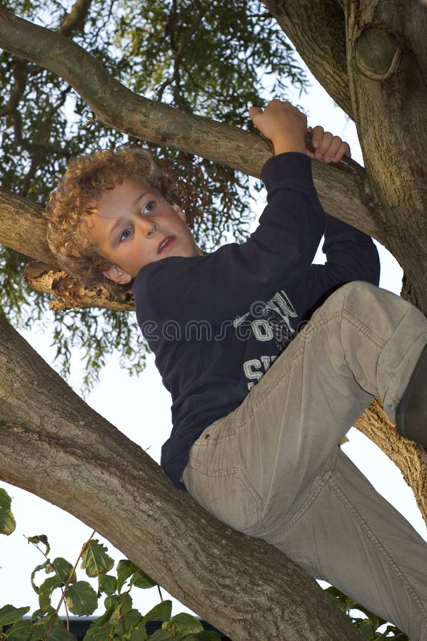 pojkeklättringtree arkivbild