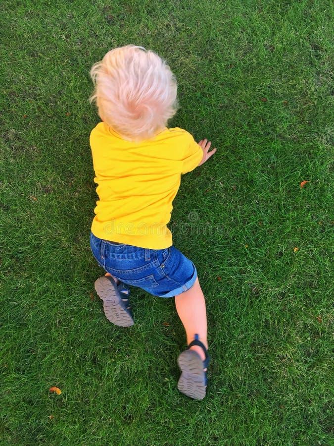 Pojkekrypning på gräs royaltyfria foton