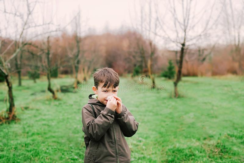 Pojken blåser hans näsa i halsduken Allergin tack vare blommar royaltyfri fotografi
