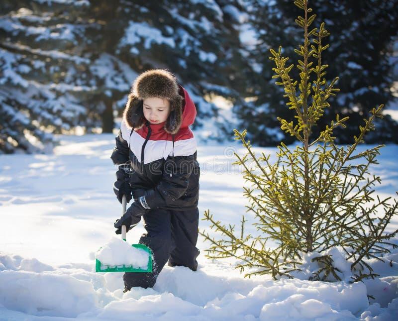 Pojken gör ren snow royaltyfria bilder